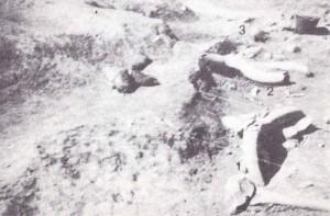 CASTEL DI GUIDO - PRIMA DELLA STORIA- Suolo di abitazione con tre crani di Bos primigenius rinvnuti nel corso della quinta campagna di scavi