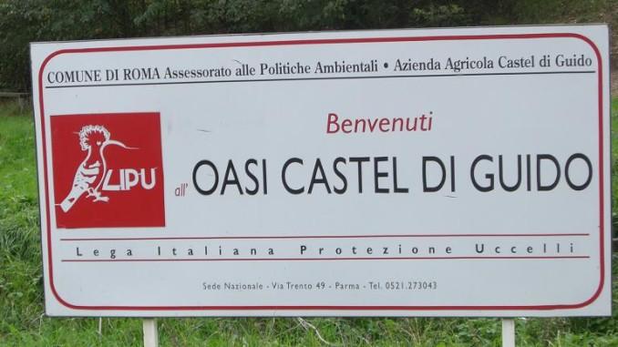 OASI LIPU di Castel di Guido- Foto Gallery del decennale 2009- 1° giorno -