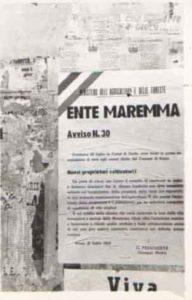 3)Manifesto del Ministero dell'Agricoltura e delle Foreste in cui si annuncia che la cerimonia di assegnazione dei poderi dell'Ente Maremma si terrà a Castel di Guido il 20 Luglio 1952: l'avviso è firmato da Giuseppe Medici, presidente dell'ente Maremma •data20.07.1952