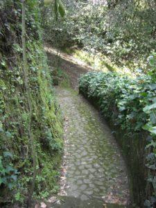 Le Catacambe della via Boccea