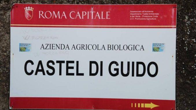 AZIENDA AGRICOLA Castel di Guido
