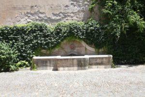 I Fontanili della Campagna Romana-Fontana interno Castello di Torre in Pietra