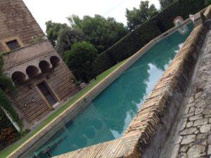 I Fontanili della Campagna Romana-Fontanile TORRETTA DEI MASSIMI