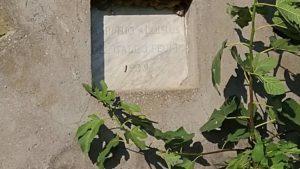 I Fontanili della Campagna Romana- Fontanile di via Santa Maria di Galeria Foto di Grazia Amici