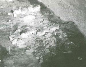 Castel di Guido- Ottava Campagna di scavo- Clasti di tufo alla base dell'alto morfologico Est.
