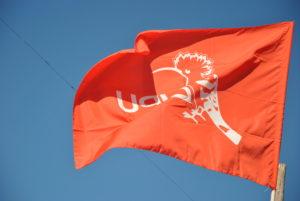 Bandiera LIPU