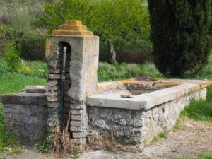 I Fontanili della Campagna Romana-Castel di Guido-Fontanile di via Filippo Ferri Mancini-