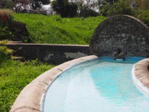 I Fontanili della Campagna Romana-Fontanile di Mezzaluna-Castel di Guido