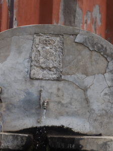 I Fontanili della Campagna Romana- Fontanile di Cecanibbio- Foto Franco Leggeri-