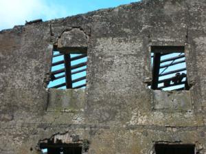 Castel di Guido-Il Degrado del Sito Archeologico Casale della Bottaccia- ATTUALE LUPANARE