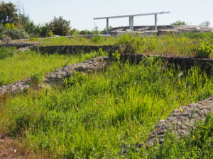 """CASTEL DI GUIDO, VILLA ROMANA DELLE COLONNACCE : """"Il Giardino Antico"""""""