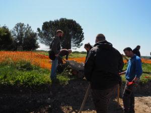 Castel di Guido- - 22 aprile 2017-GAR- Sessione di scavo Villa Romana delle Colonnacce