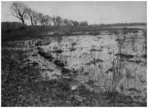 """Maccarese -Località """"LE PAGLIETE"""" prima del 1925"""