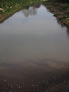 Canale di Bonifica di MACCARESE