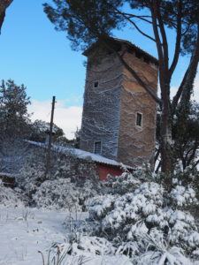 Neve a Castel di Guido - Residenza Aurelia -LA TORRE--ore 8:30 del 26 febb 2018