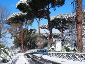 Neve a Castel di Guido - Residenza Aurelia --ore 8:30 del 26 febb 2018