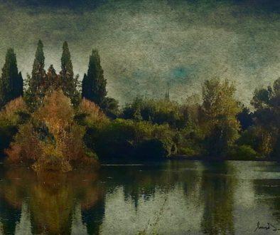 Opera di Maria Letizia De Simone